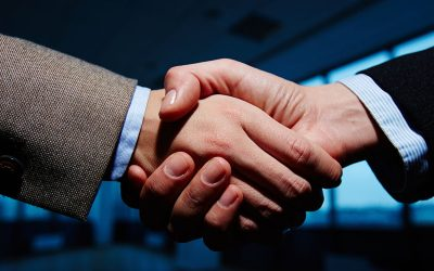Seeking Partners on BOLD Action Workshops